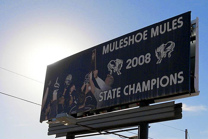 Muleshoe 02