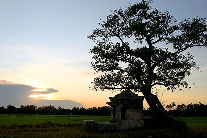 2011 07 27 011 Landscapes 01
